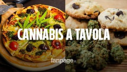La cannabis arriva a tavola: dai biscotti alla birra, ecco cosa si potrà mangiare