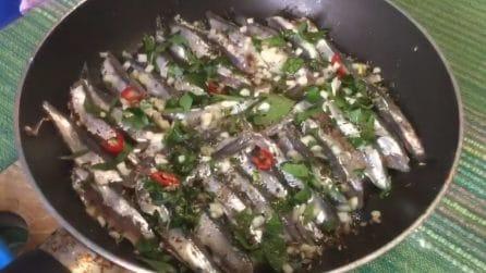 Alici arreganate: la ricetta tradizionale che conquisterà tutti