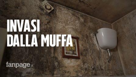 """Ponte di Nona, Gina 90 anni vive in una casa popolare invasa dalla muffa: """"Non ce la faccio più"""""""