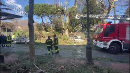 Maltempo, cade un albero a Cava dei Tirreni: morto un uomo