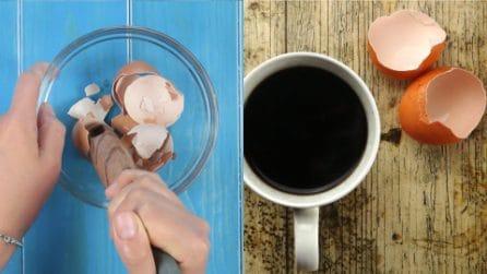 Ecco come riciclare i gusci d'uovo in modo geniale!
