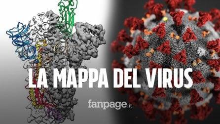 Creata la mappa 3D del coronavirus: è pietra miliare per lo sviluppo di un vaccino