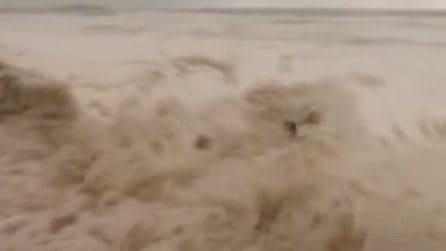 La pioggia continua a sferzare l'Australia orientale: la schiuma invade le spiagge