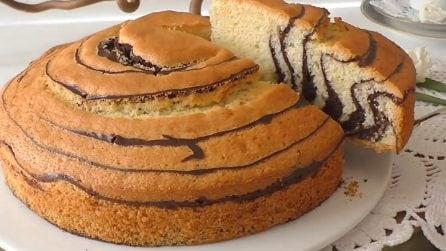 Torta zebrata e soffice: il dessert bello da vedere e buonissimo