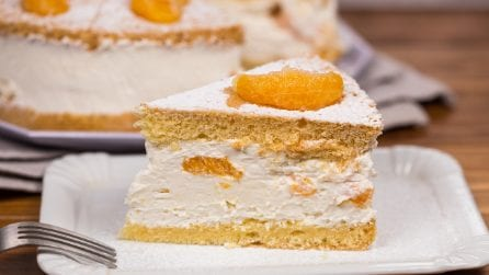 Tangerine creamy cake: a dessert to fall in love with!