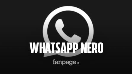 "WhatsApp, disponibile il tema scuro ""Dark Mode"" su Android e iPhone: ecco come attivarlo"