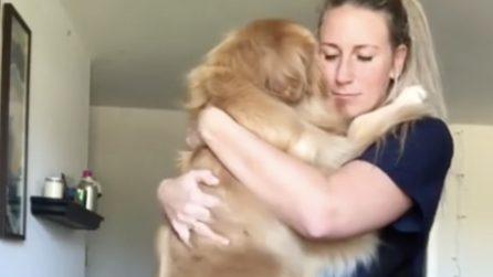 Il tenero abbraccio tra il cane e la ragazza: quanto amore tra i due
