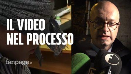 """Omicidio Cerciello, avvocati Natale: """"Video bendato deve entrare nel processo"""""""