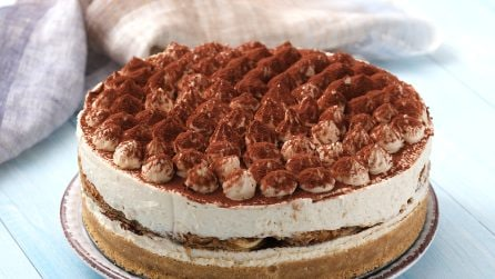 Tiramisù cake: the dessert everyone will love!