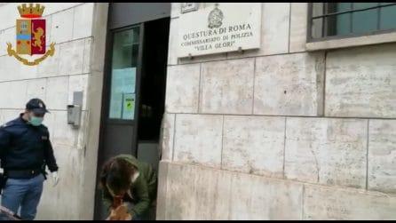 Roma, perde i cagnolini su Corso Francia: la polizia li trova e li consegna alla proprietaria