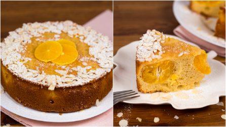 Torta soffice ai mandarini: il dolce goloso che conquisterà grandi e piccini!