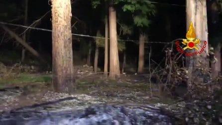 Scoppia un incendio nei boschi del Terminio: vigili del fuoco in azione