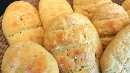 Panini al formaggio: la ricetta semplice che piace a grandi e piccoli