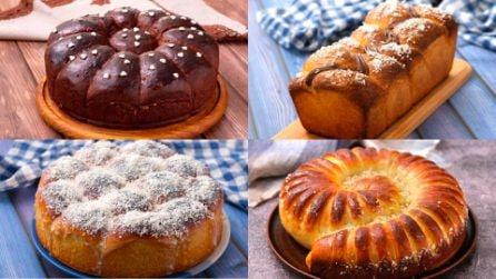Lasciati conquistare dalla bontà di queste brioche! Perfette per le tue colazioni e le tue merende!