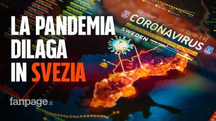 Coronavirus, la Svezia non ha attuato il lockdown: ora i morti e i contagi crescono a dismisura