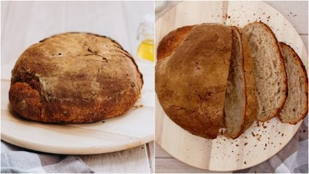 Pane casareccio: ecco tutti i passi per ottenere un pane perfetto!