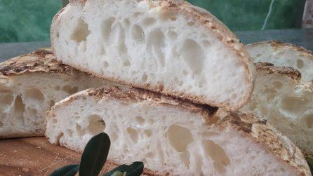 Pane senza glutine: la ricetta per averla buonissima e alveolata