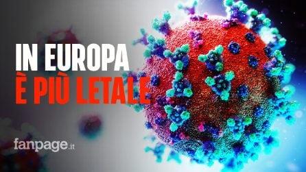 Coronavirus, in Europa è più letale: lo studio che ha scoperto 30 ceppi del Coronavirus