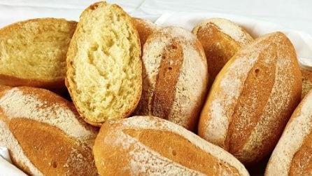 Panini fatti in casa: come prepararli interamente a mano