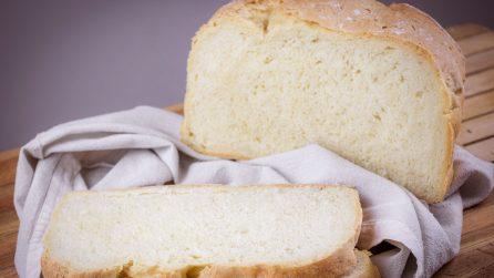 Pane senza stress: la ricetta facile per avere una pagnotta alta, gonfia e morbida!