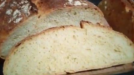 Pane fatto in casa senza impastatrice: la ricetta semplice e saporita