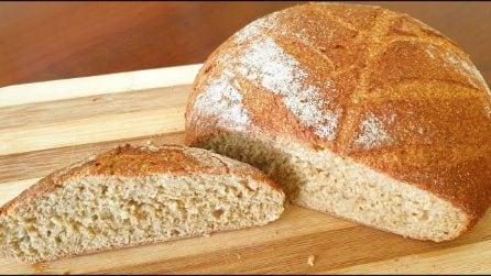 Pane integrale ai 5 cereali: la ricetta semplice per farlo a casa