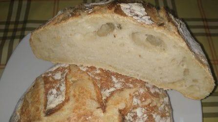 Pane fatto in casa: la ricetta per averlo croccante e saporito