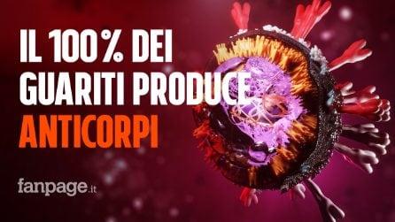 Il 100% dei guariti dal coronavirus produce anticorpi: perché è un'ottima notizia
