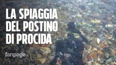 """Procida, la Spiaggia del Postino e Carlo, il suo 'custode': """"Torneremo presto"""""""