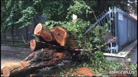 Nubifragio a Milano, esonda il Seveso: alberi caduti, allagamenti e blackout