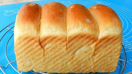 Pane allo yogurt: la ricetta per averlo alto, soffice e goloso
