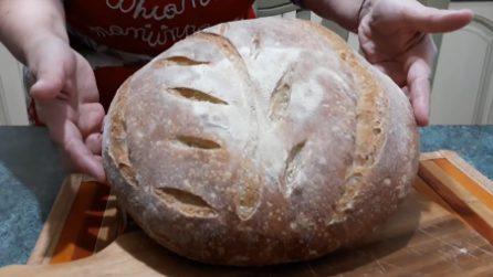 Pane fatto in casa con lievitazione in frigo: la ricetta per averlo fragrante e morbido