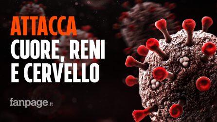 Il Coronavirus non colpisce solo i polmoni: attacca anche cuore reni e cervello