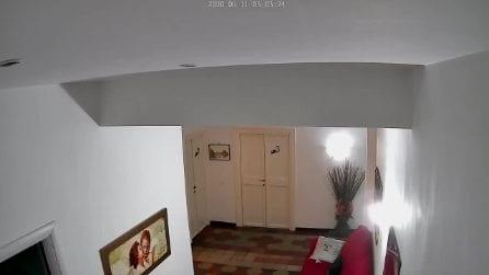 Roma, la scossa di terremoto fa tremare il portone e le finestre (VIDEO)