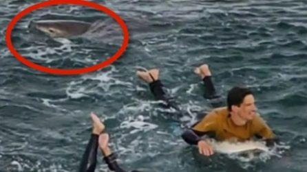 Surfista morso da uno squalo: il video riprende la spaventosa scena
