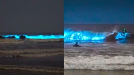 Le onde si colorano di un azzurro intenso: il fenomeno spettacolare della bioluminescenza