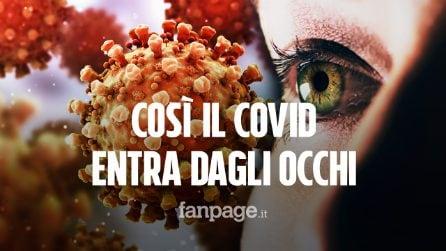 Così il coronavirus entra dagli occhi: scoperte le cellule che favoriscono l'infezione