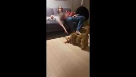 Il video che smentisce la crisi: Paolo Calabresi Marconi a casa con Alessia Marcuzzi e la figlia Mia