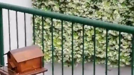 Violenta grandinata a Lecco: il maltempo si abbatte sulla città