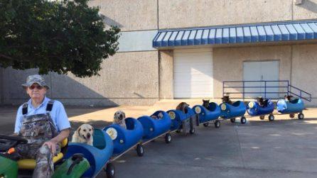 """Costruisce un trenino per i cani randagi: """"Così li porto in cerca di avventure"""""""