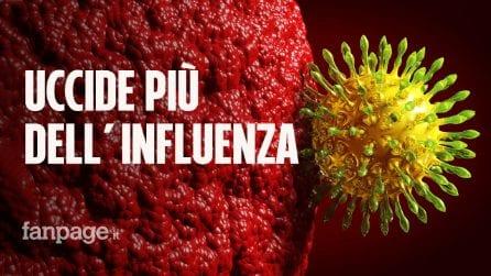 Il coronavirus uccide molto più dell'influenza: la conferma da due studi