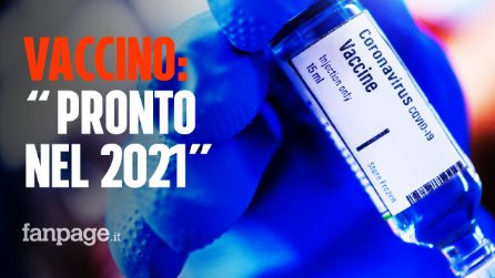 """Vaccino coronavirus: """"Pronto ragionevolmente tra primavera e estate del 2021"""""""