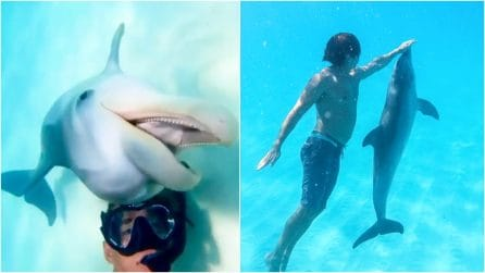 Il delfino selvatico non si allontana mai dalla barca di questo ragazzo: un'amicizia emozionante
