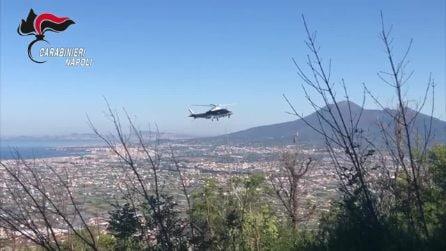 Monti Lattari, carabinieri scoprono piantagione di marijuana