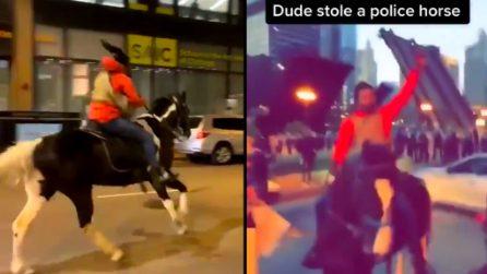 """Chicago, uomo gira con un cavallo durante le proteste: """"l'ho rubato alla polizia"""""""