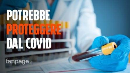 """Qual è il gruppo sanguigno che potrebbe """"proteggere"""" dal coronavirus: lo studio"""