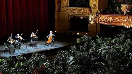 Spettacolo per la natura: il teatro riapre ma i musicisti suonano per le piante