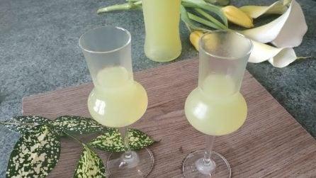 Limoncello fatto in casa: la ricetta del liquore dolce che tutti amano