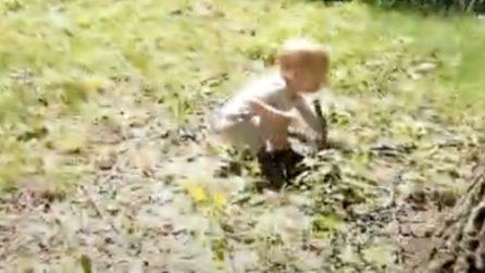 Il papà si distrae e il figlio afferra un grosso serpente tra le mani