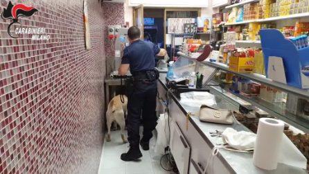 Monza, 10 arresti per spaccio di droga: la base del gruppo in una macelleria